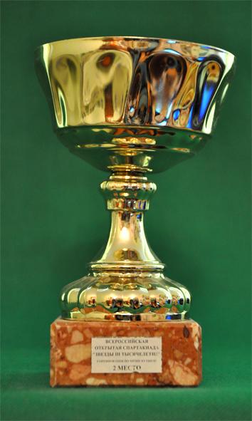 1 место Первенство Выборгского района по футболу среди мужских команд