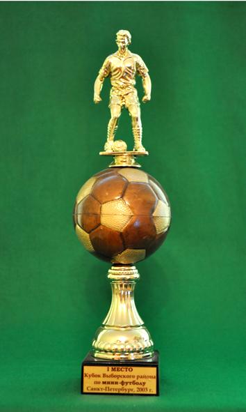 1 место Кубок выборгского района по мини-футболу среди мужских команд
