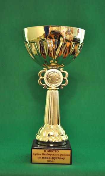 2 место Кубок Выборгского района по мини-футболу среди мужских команд