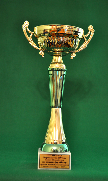3 место Первенство ВУЗов Санкт-Петербурга по мини-футболу среди женских команд