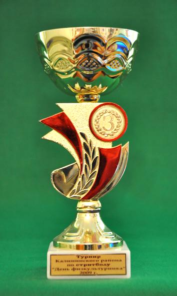 3 место Турнир по стритболу среди мужских команд, посвященный Дню физкультурника