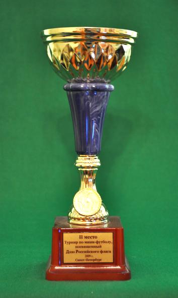 2 место Турнир по мини-футболу среди мужских команд, посвященный Дню флага РФ