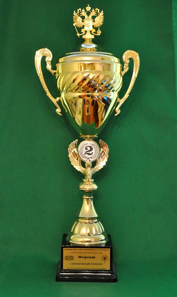 2 место Чемпионат Санкт-Петербурга по футболу среди женских команд